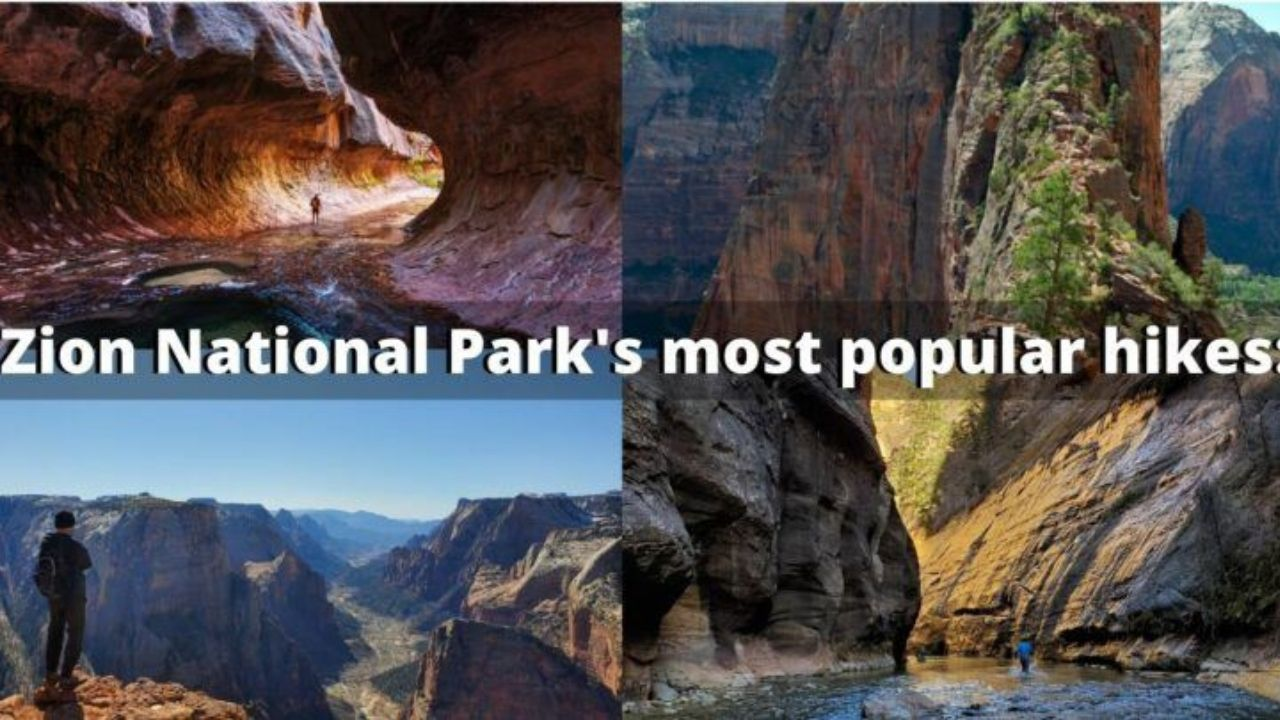 zion national park most popular hikes and attractions