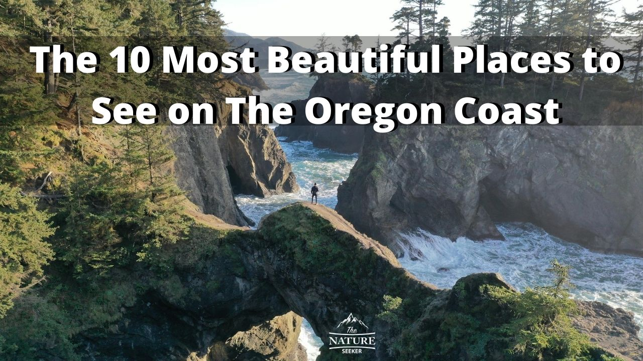 The 10 Most Beautiful Places to See on The Oregon Coast