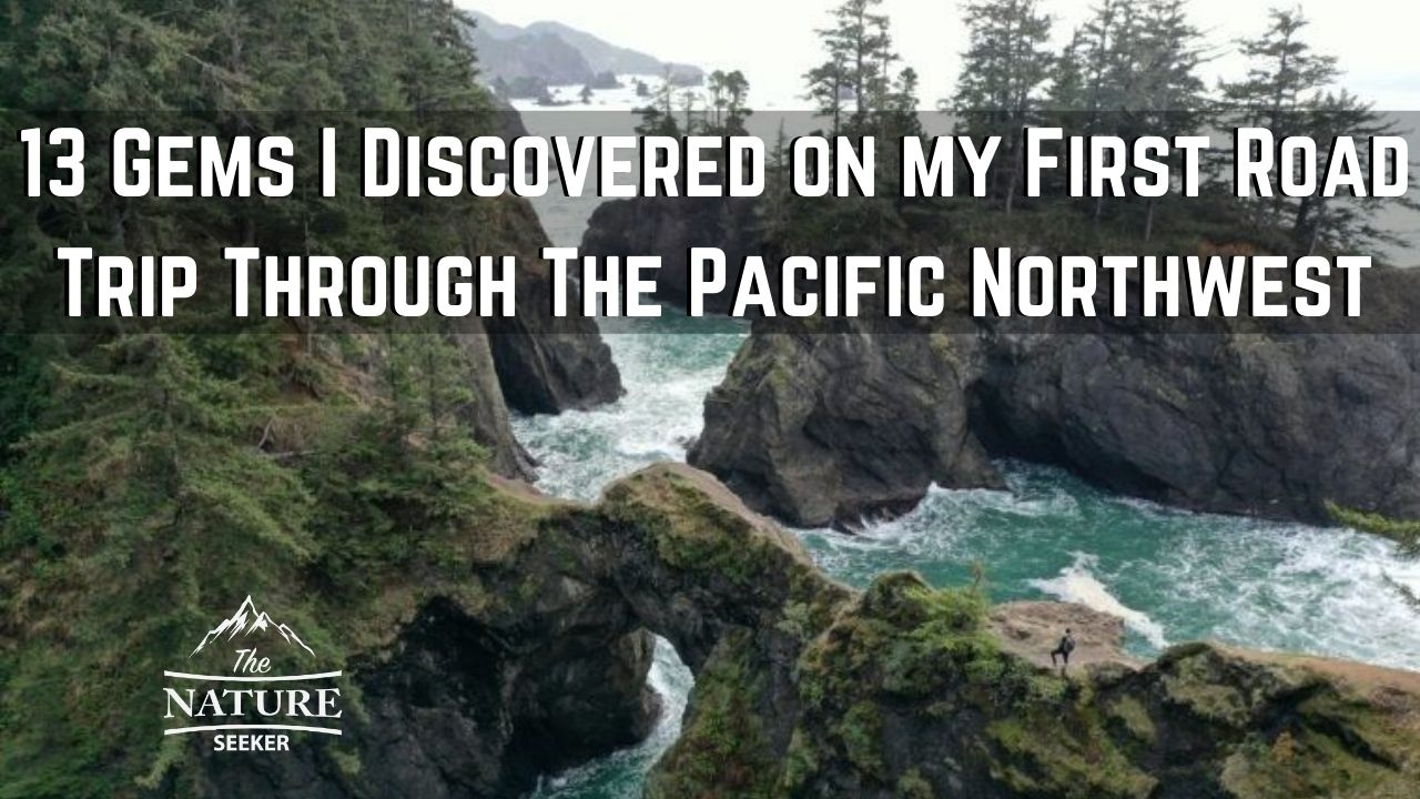 my first pacific northwest road trip and what I saw 07