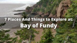 7 Things to See And do at Bay of Fundy For Your First Visit