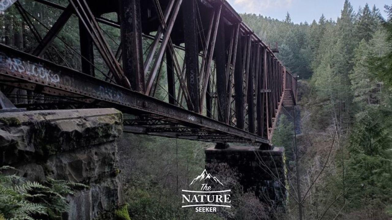 abandoned trestles like vance creek bridge and high steel bridge 01