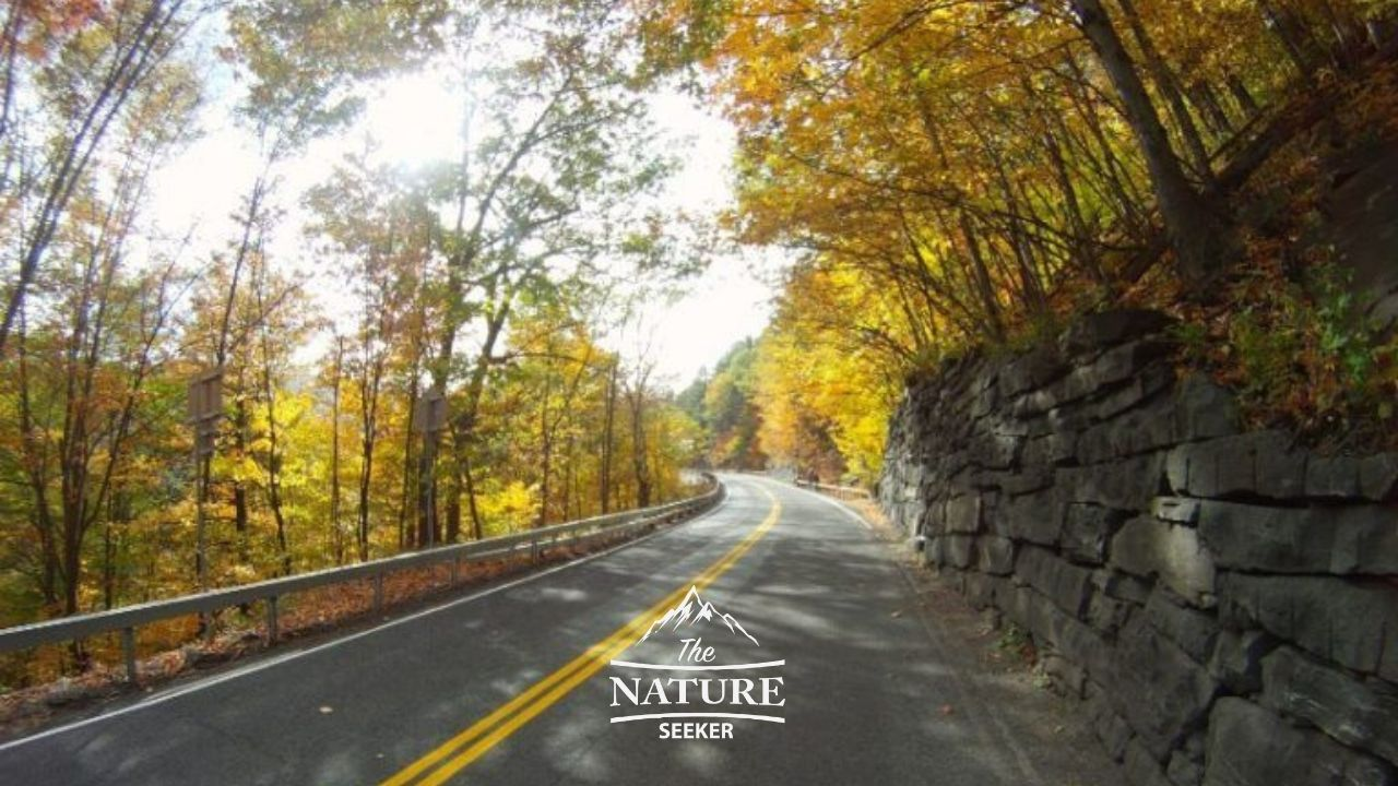 catskill mountains scenic drive on the appalachian trail 02