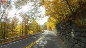 catskills scenic drive in new york state