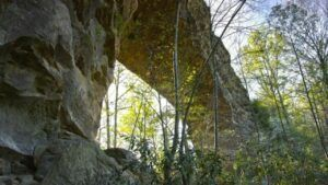 daniel boone national forest scenic drive near appalachian mountains