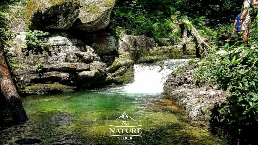 dunnfield creek blue trail delaware water gap