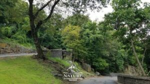 fort lee historic park nature spot close to new york city