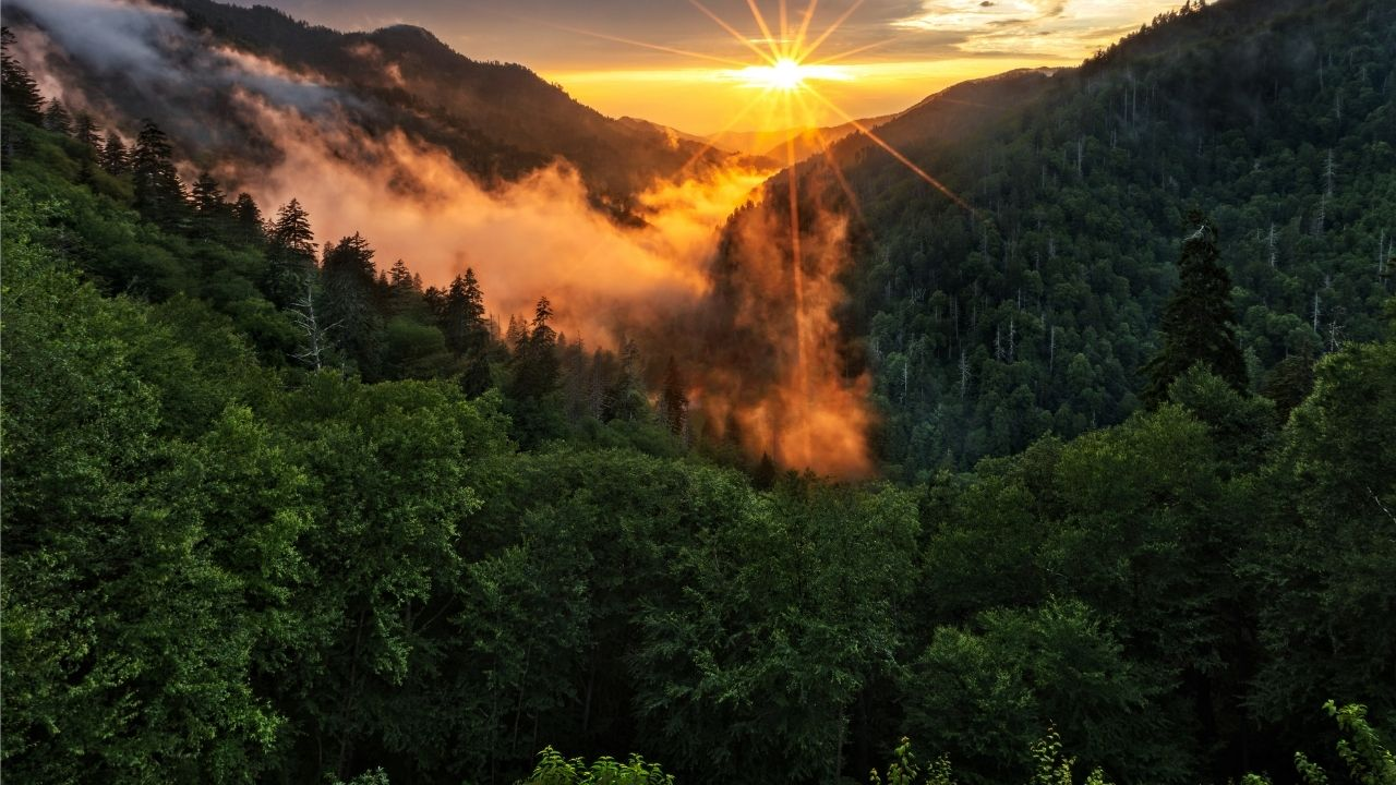 great smoky mountains national park in the blue ridge mountains 04