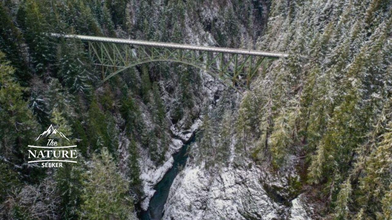 high steel bridge vs vance creek bridge in washington 02