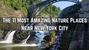 nature places near new york city