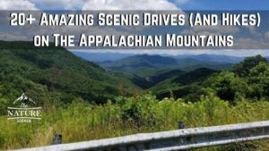 scenic hikes and drives on the appalachian mountains 03