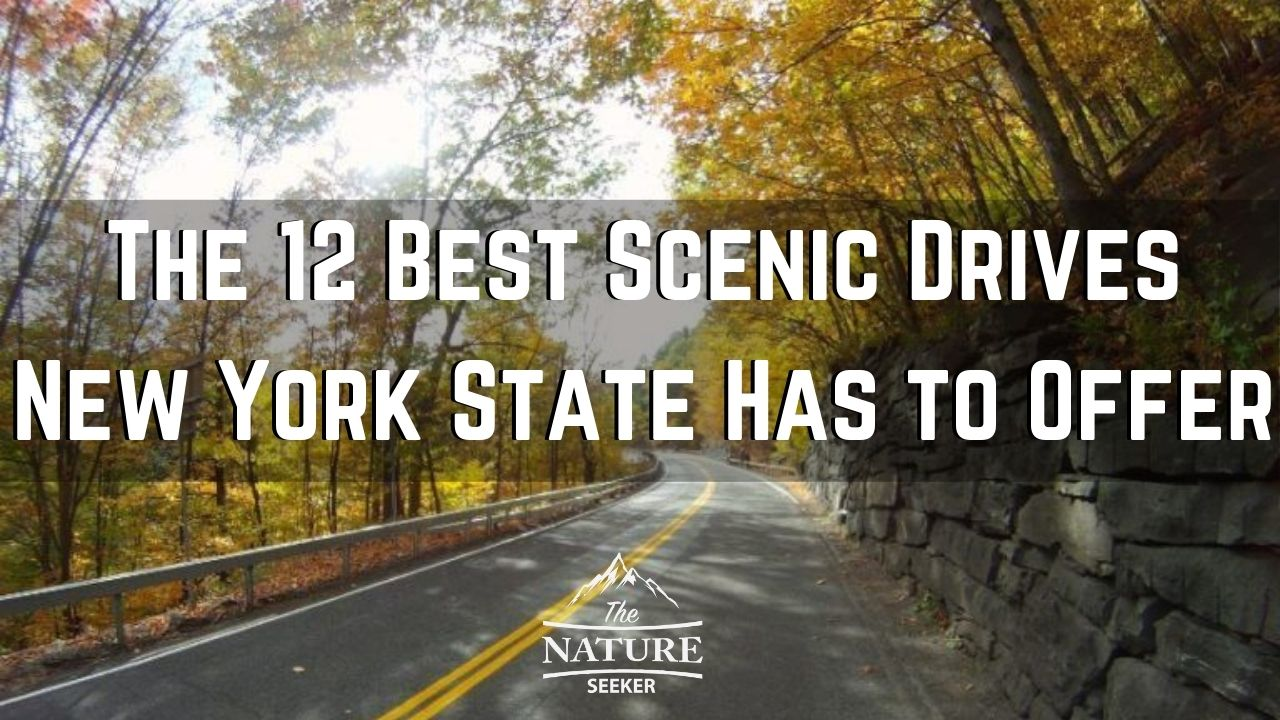 the 12 best scenic drives in new york state