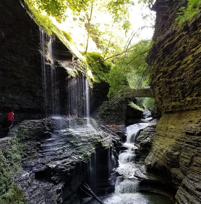 watkins glen new york state