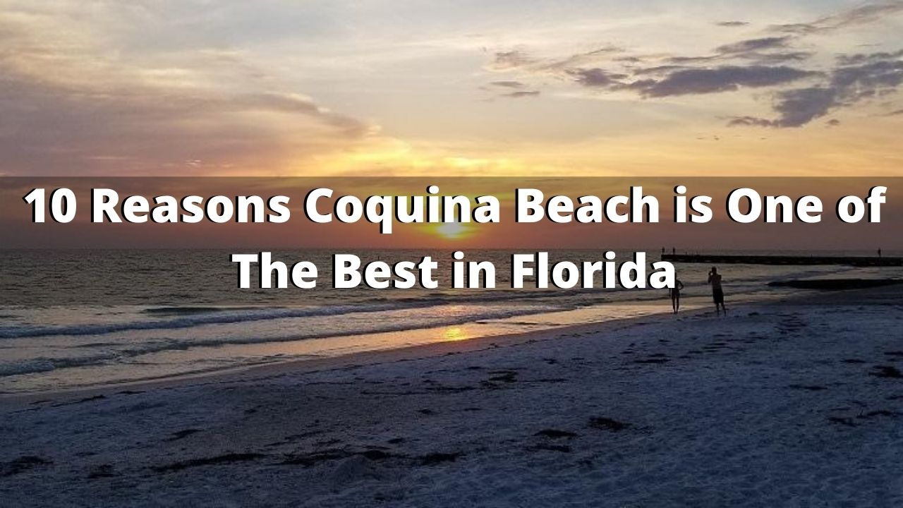 10 Reasons Coquina Beach is One of The Best in Florida