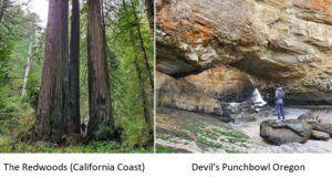 california coast vs oregon coast 5