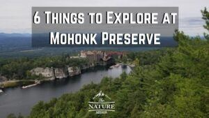 things to do at mohonk preserve