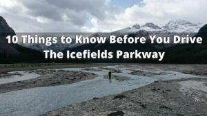 10 Things to Know Before You Drive The Icefields Parkway