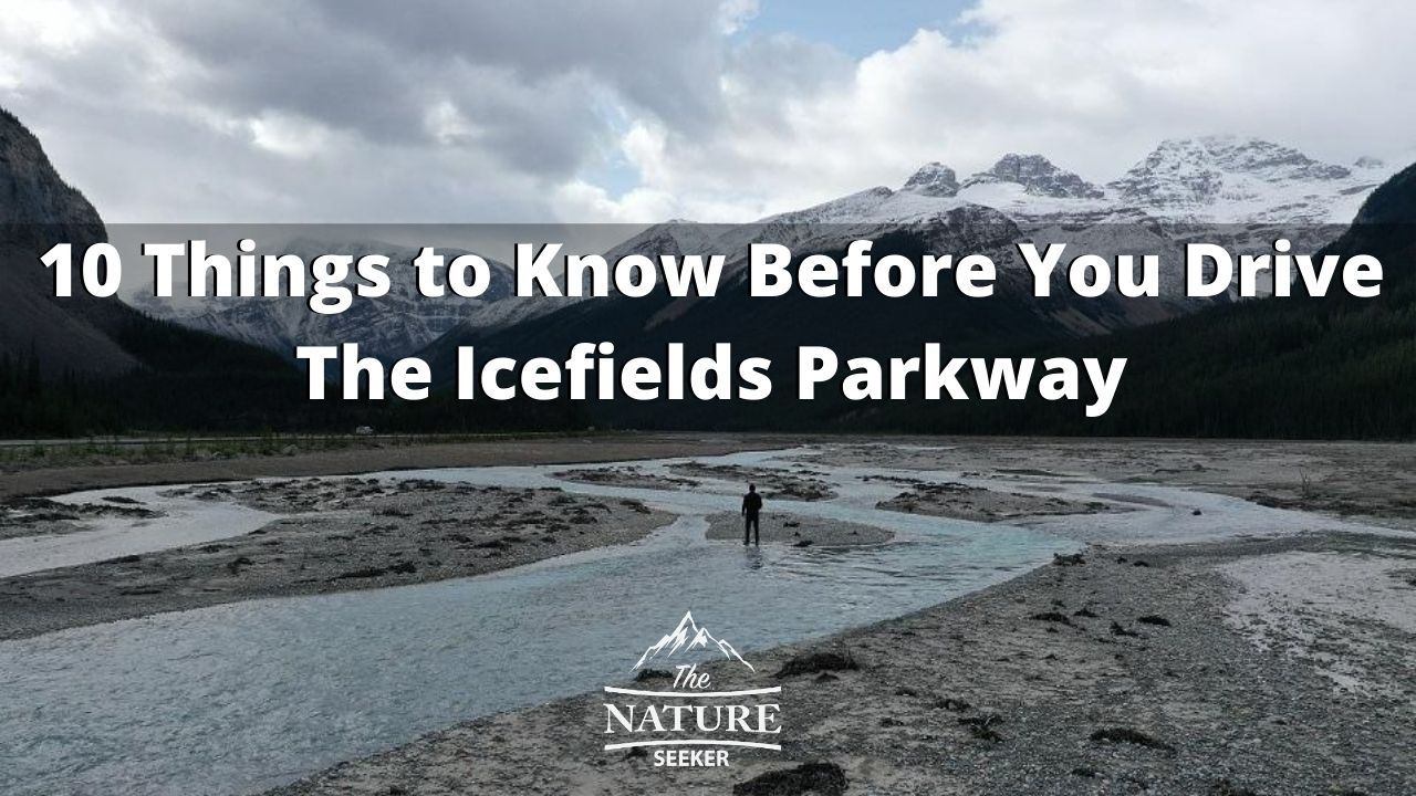 10 things to know before driving the icefields parkway