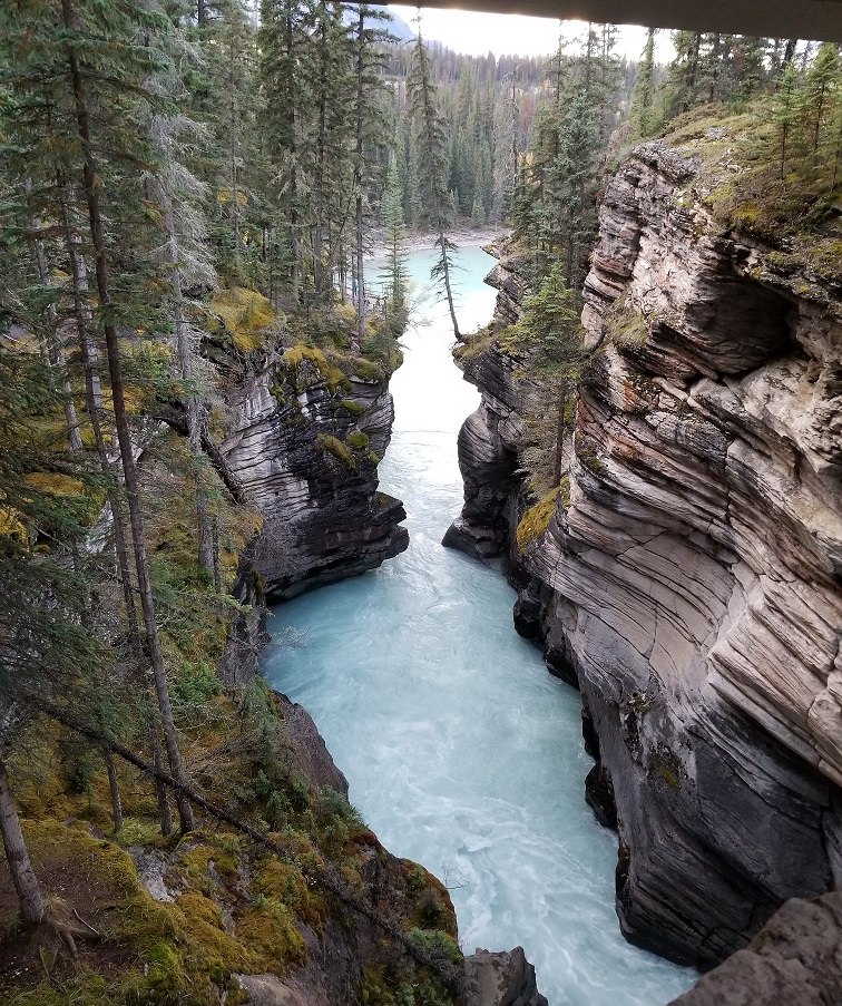 Athabasca Falls photo