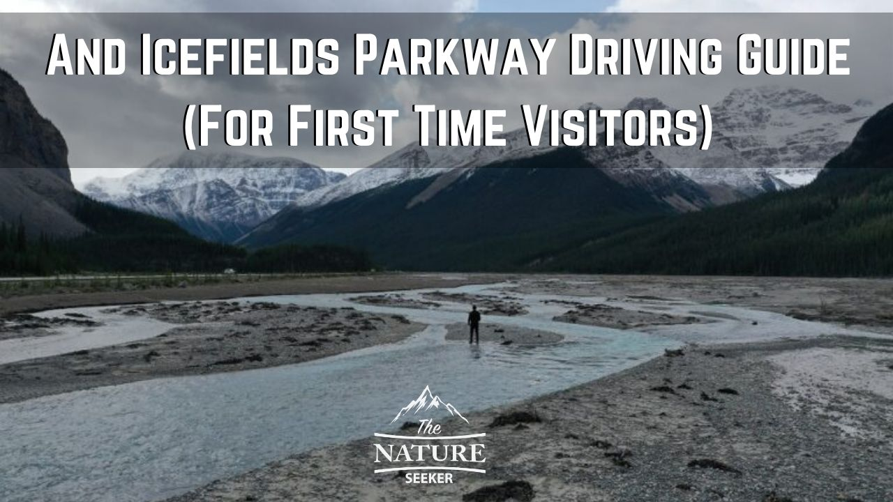 icefields parkway driving guide 03
