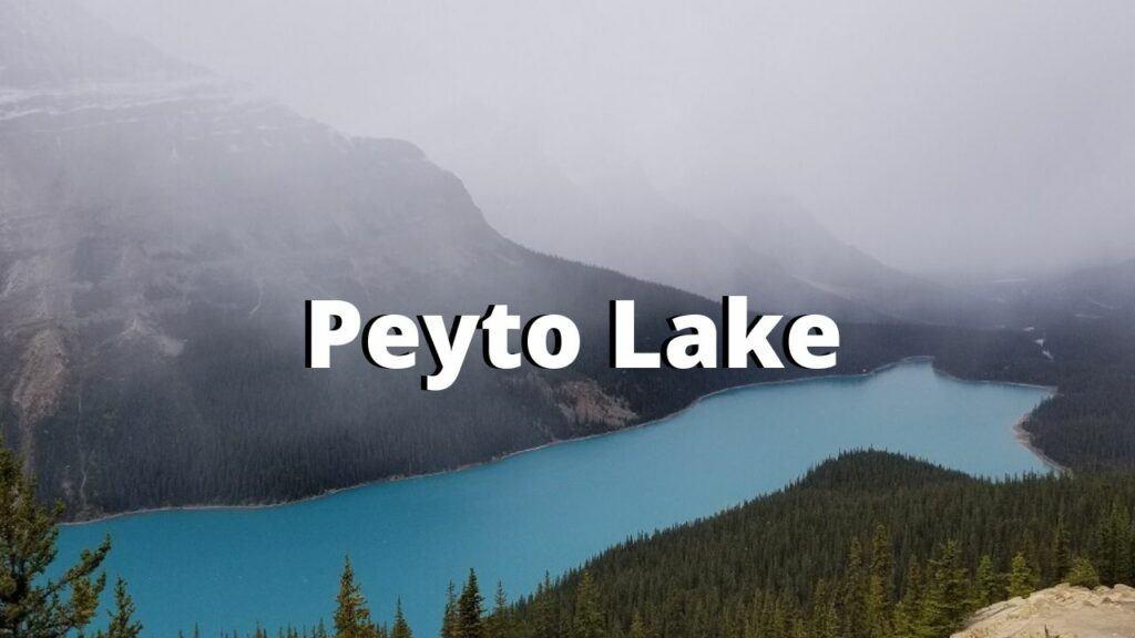 peyto lake canadian rockies