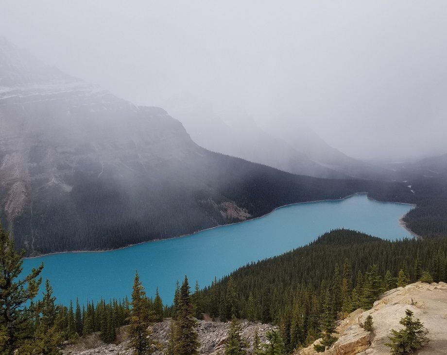 peyto lake photo