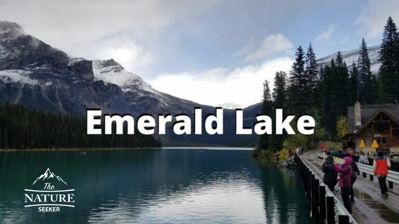 places to see in the canadian rockies emerald lake 01