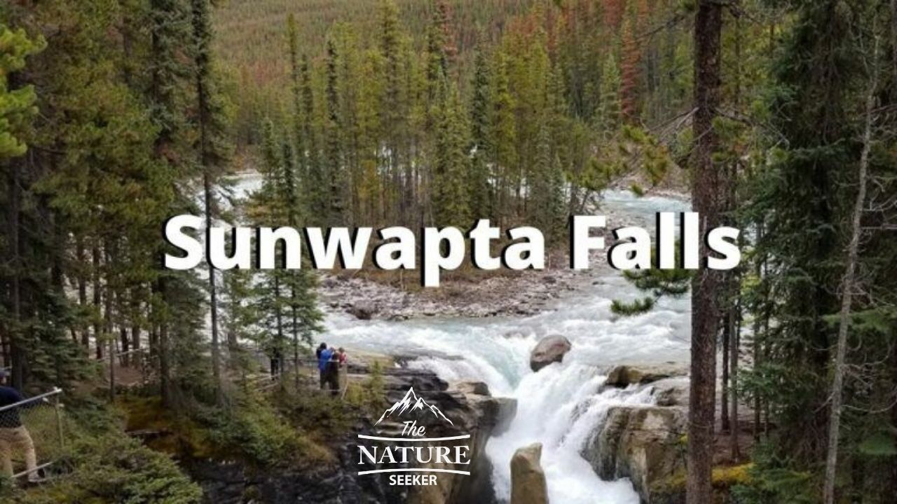 places to see in the canadian rockies sunwapta falls 09