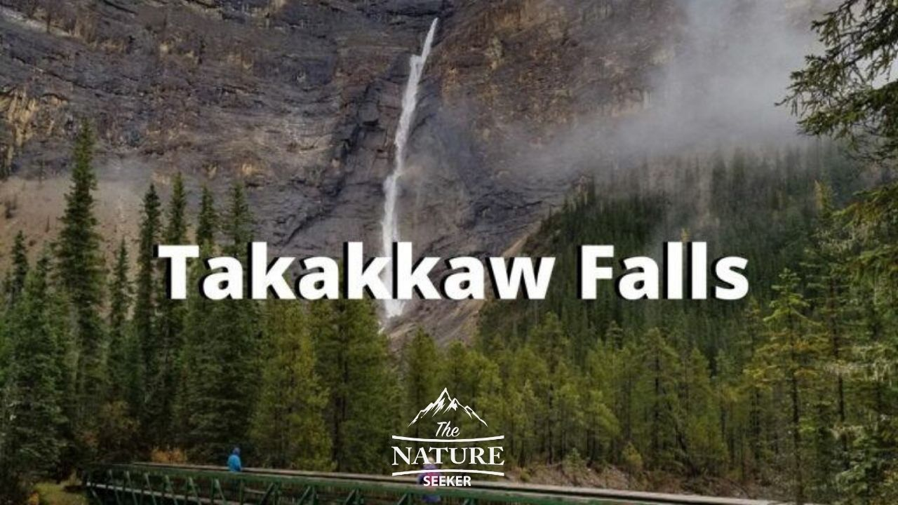 places to see in the canadian rockies takakkaw falls 01
