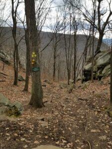 breakneck ridge green trail down