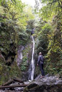 gold stream park vancouver island photo