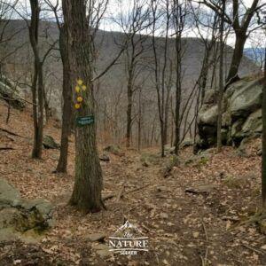 hiking the breakneck ridge loop on yellow trail
