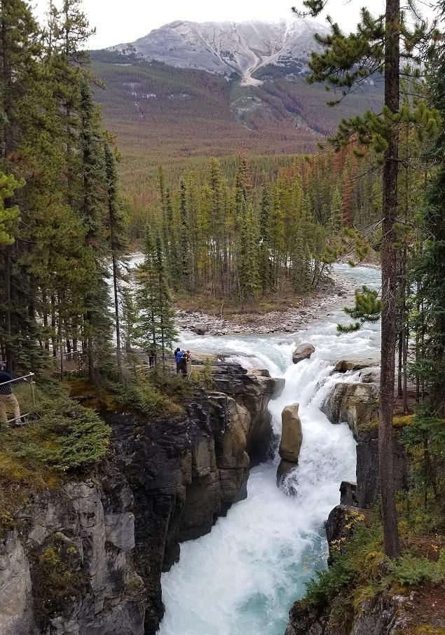 sunwapta falls near jasper