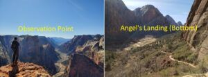 angels landing vs observation point