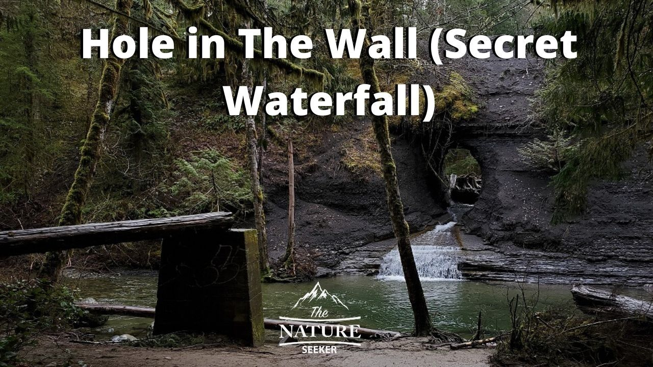 how to find hole in the wall waterfall vancouver island 07