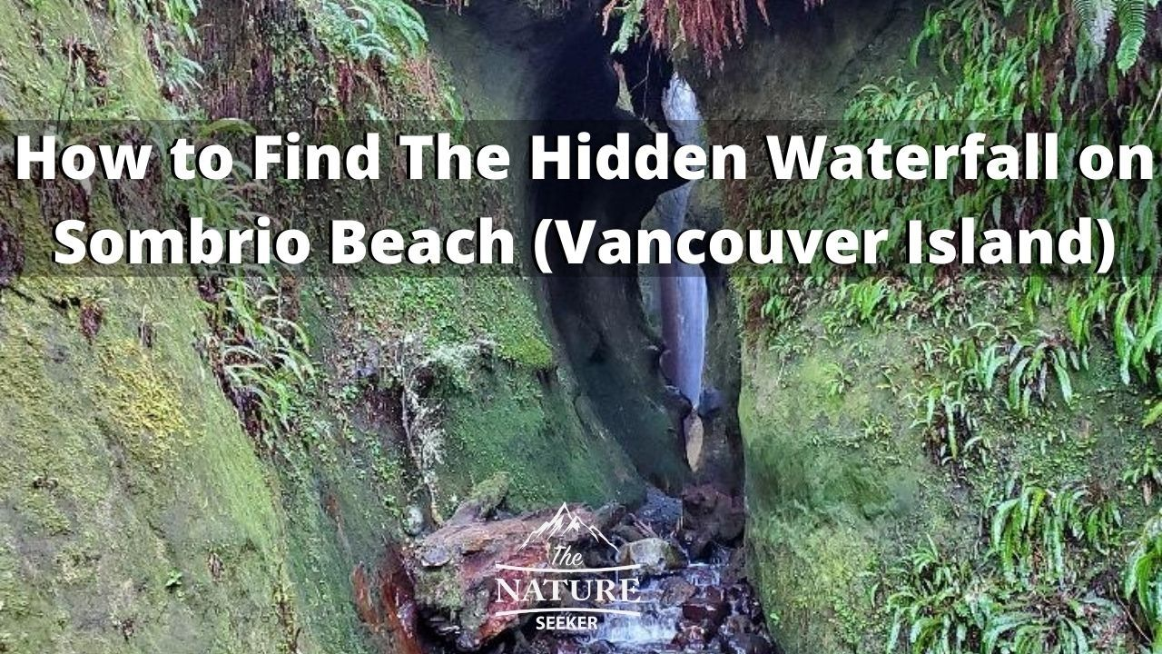 how to find the hidden waterfall on sombrio beach 08