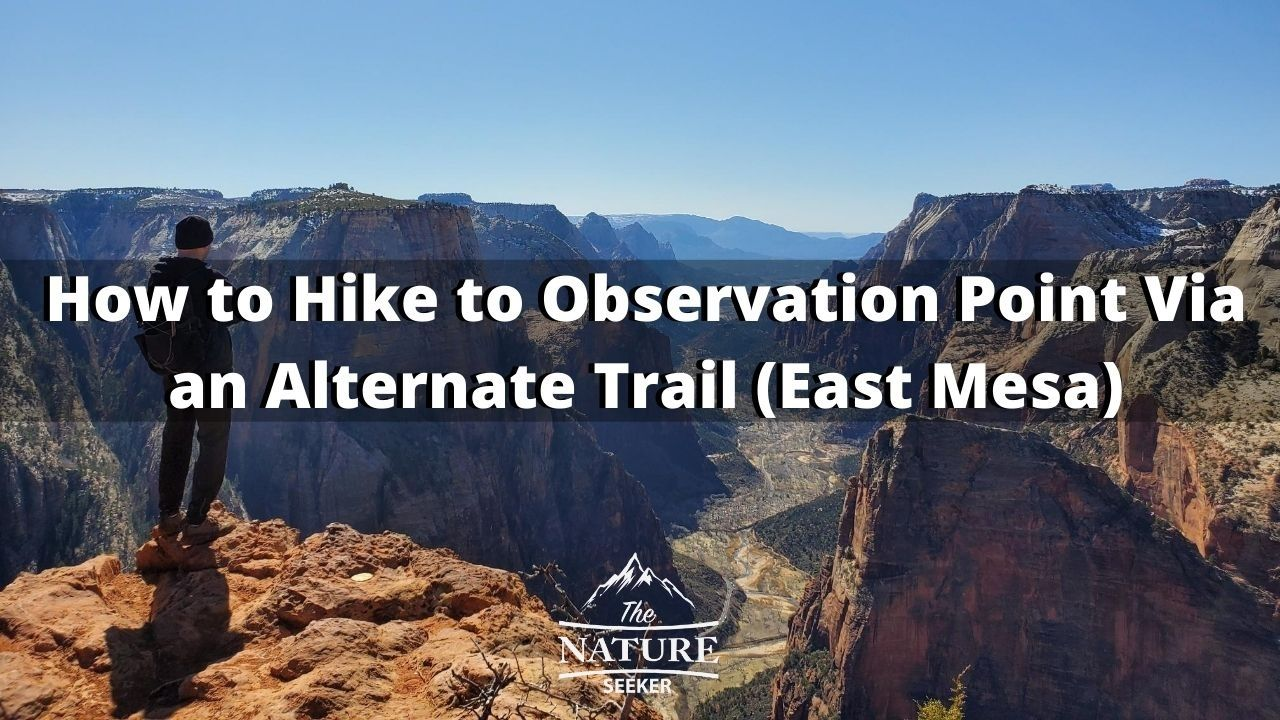 how to hike to observation point alternative trail 01