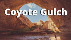 how to navigate coyote gulch in one day