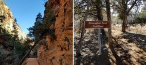 observation point vs angel's landing hike