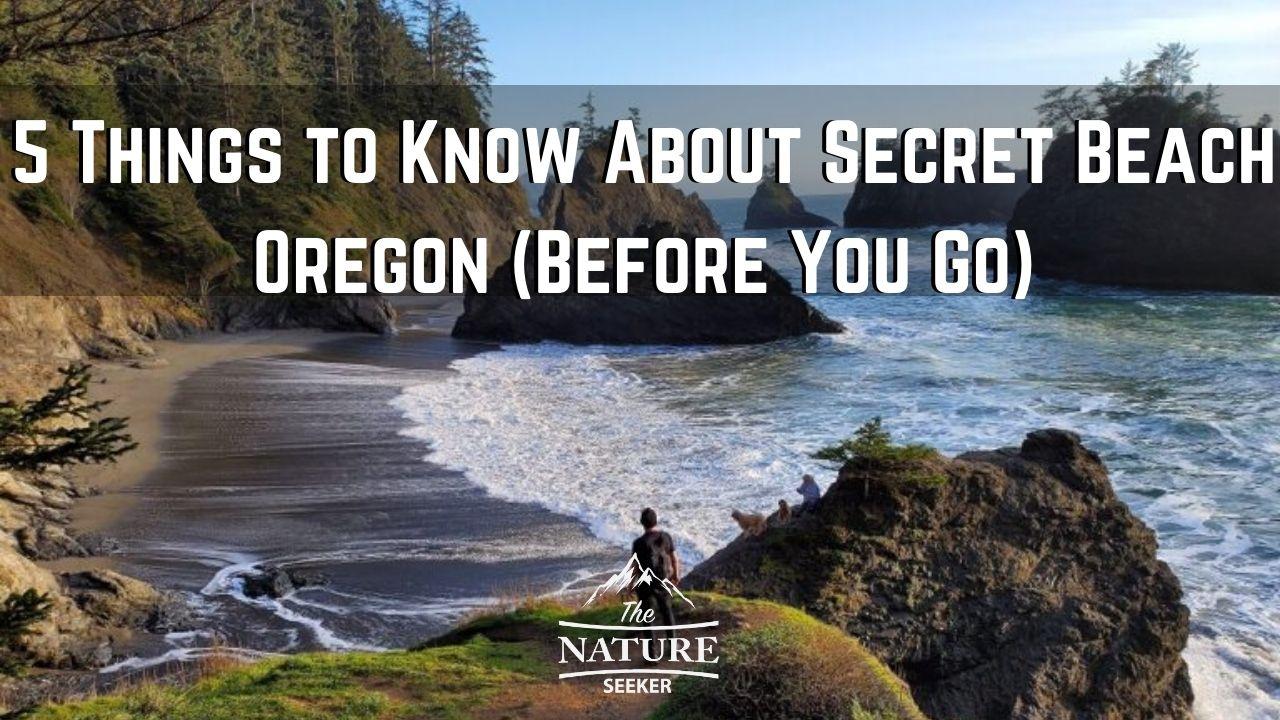 secret beach in the oregon coast 05