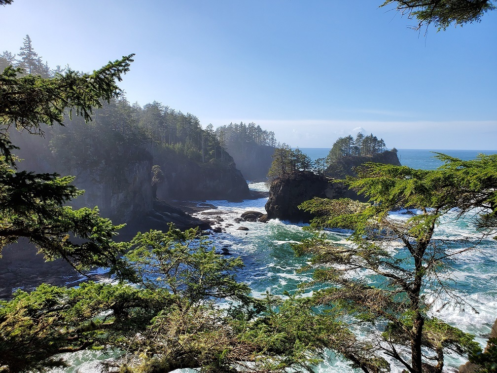 cape flattery viewing area