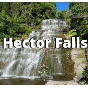 hector falls located in finger lakes new york state