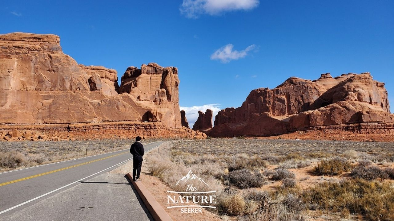 la sal viewpoint at arches national park image 01