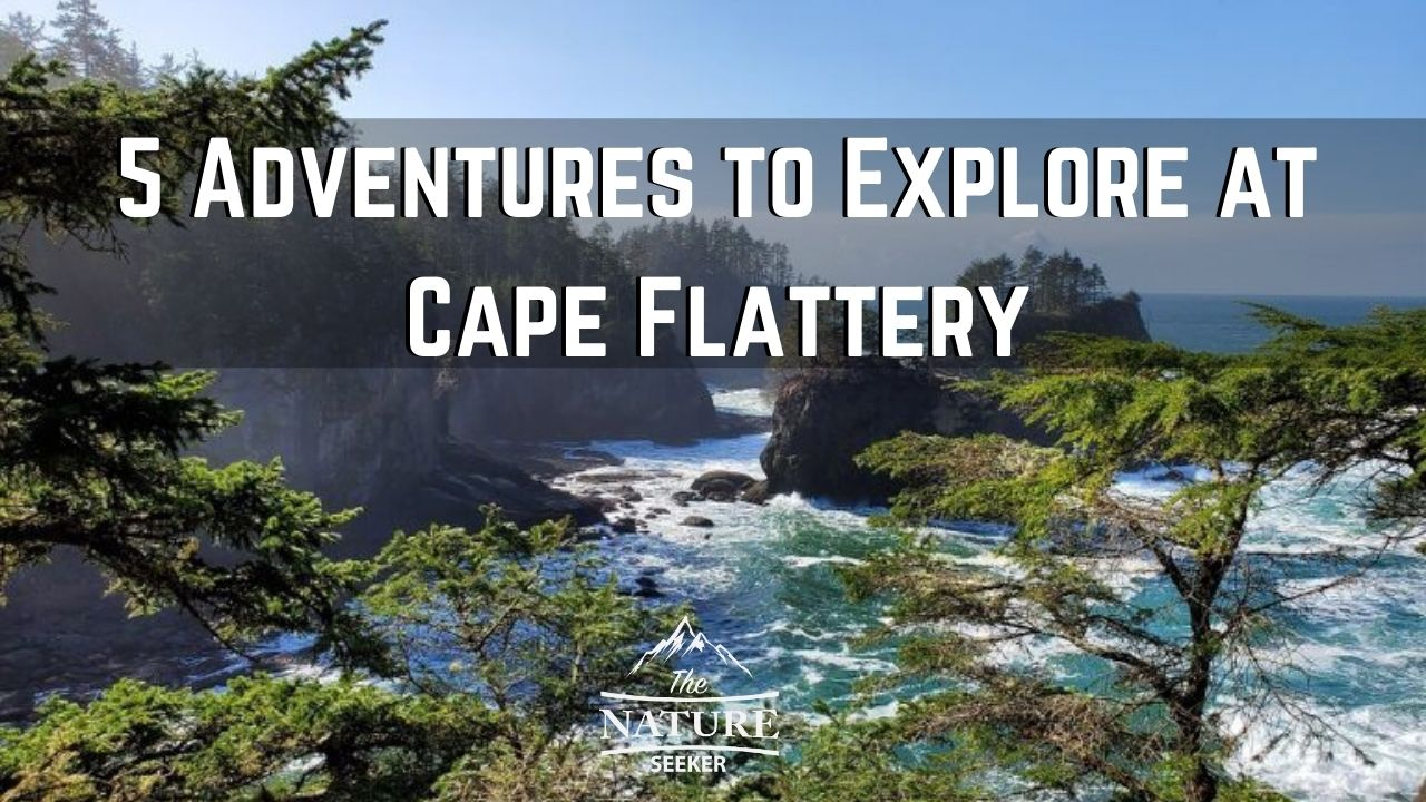 what to do at cape flattery