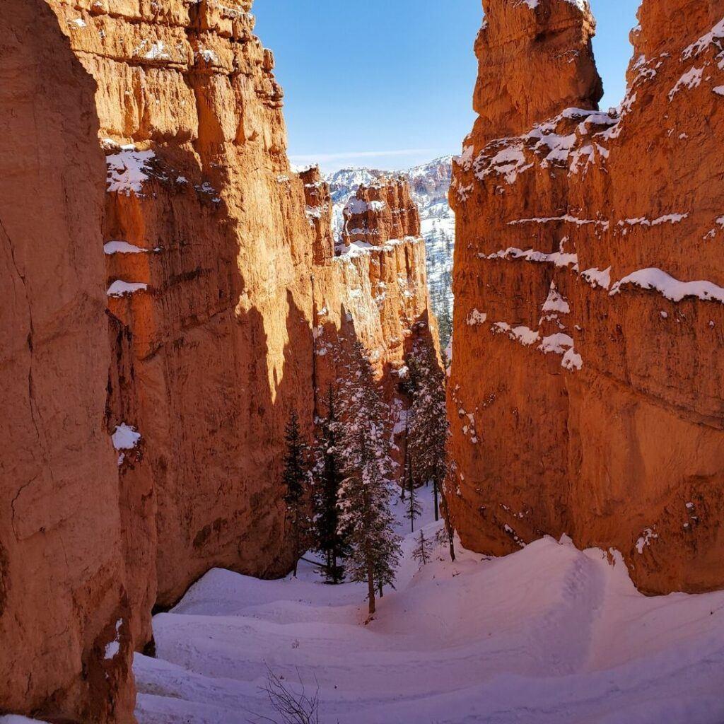 bryce canyon national park navajo loop trail zig zag