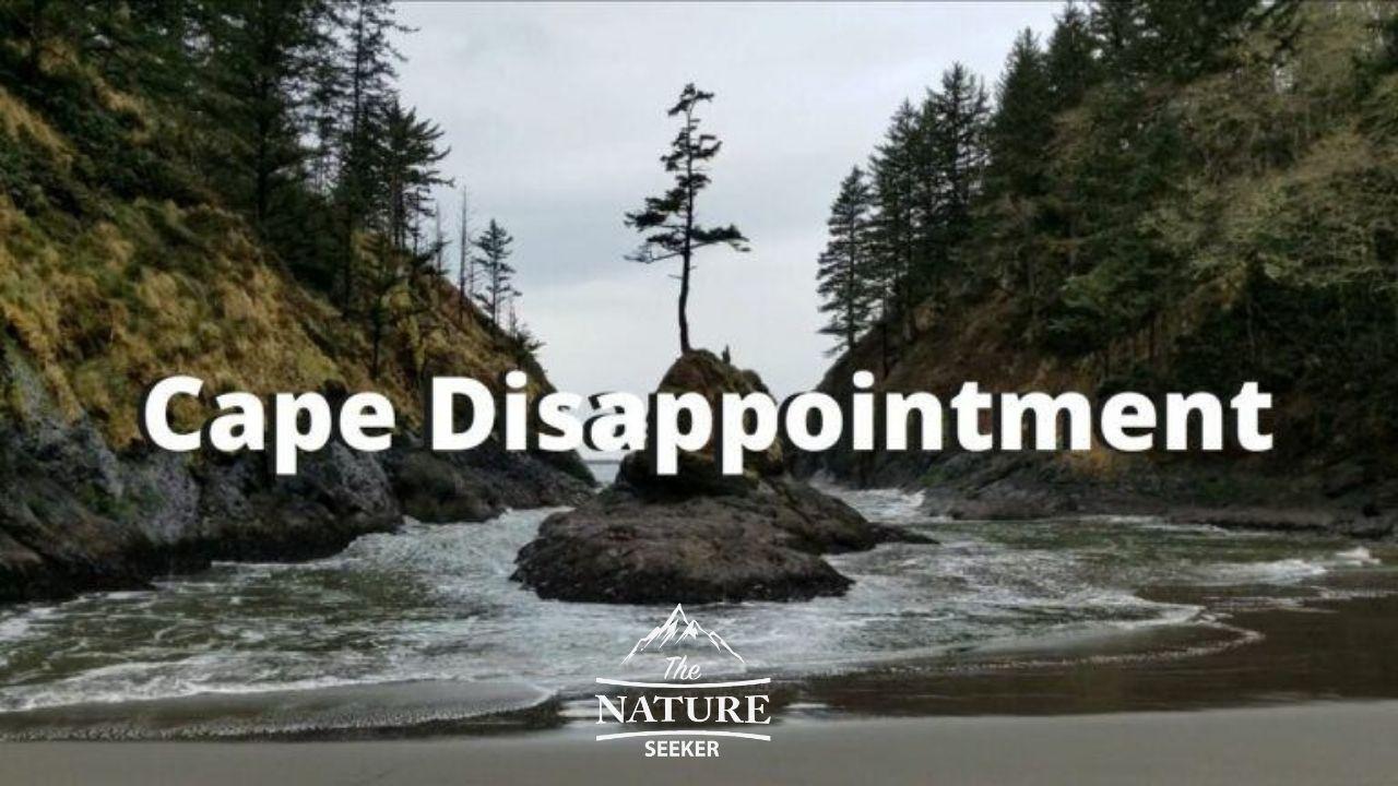 cape disappointment on the washington coast 01