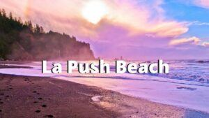 la push beach washington coast