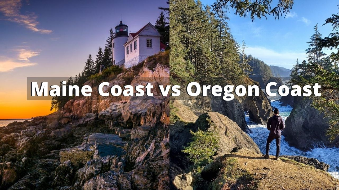 maine coast vs oregon coast