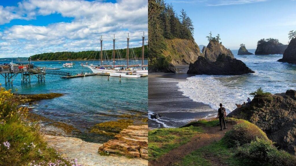 maine coast vs oregon coast 3