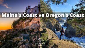 maine coast vs oregon coast