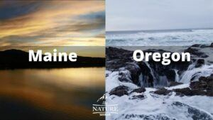 maine coast vs oregon coast comparison 3
